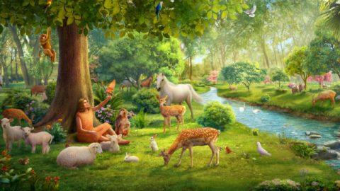 genesis,Alle dingen die door God zijn geschapen,God schiep vanaf allereerste begin