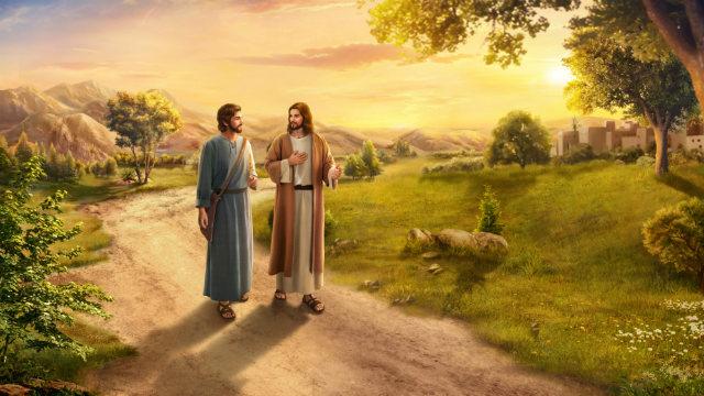 Naar wie verwijzen de degenen die tot Gods uitverkorenen behoren?