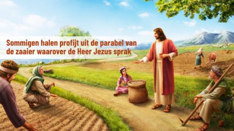 Sommigen halen profijt uit de parabel van de zaaier waarover de Heer Jezus sprak