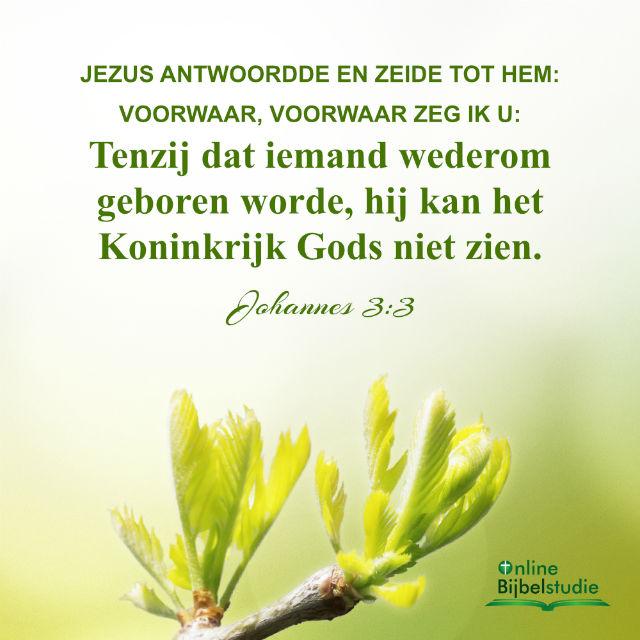 Bijbeltekst plaatjes – Johannes 3:3