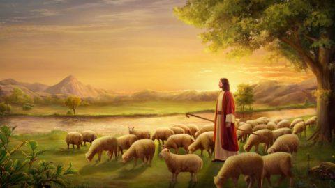 De reden waarom de Heer Jezus Christus wordt genoemd