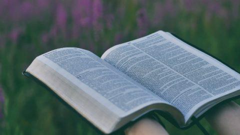 Bijbelteksten zeggen dat de Heer zal komen