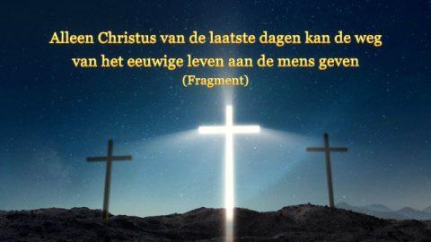 Alleen Christus van de laatste dagen kan de weg van het eeuwige leven aan de mens geven