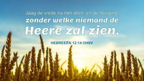 Bijbelteksten over zonde om u te helpen de weg te vinden om van zonde af te komen