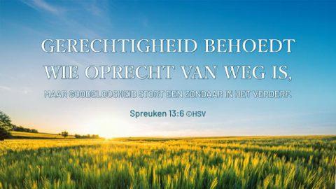Bijbeltekst van de dag – Spreuken 13:6
