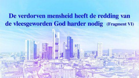 'De verdorven mensheid heeft de redding van de vleesgeworden God harder nodig' (Fragment VI)