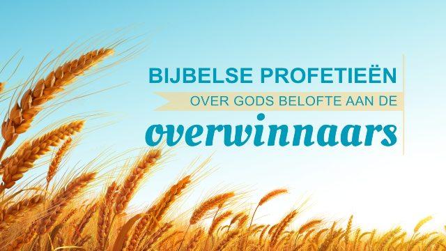 Bijbelse profetieën over Gods belofte aan de overwinnaars