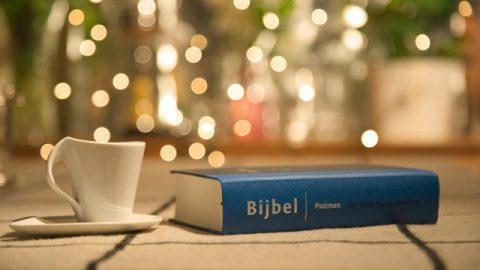 Hoe moet iemand de Bijbel benaderen in overeenstemming met Gods wil?
