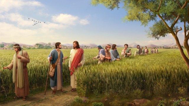 De Mensenzoon is heer en meester over de sabbat