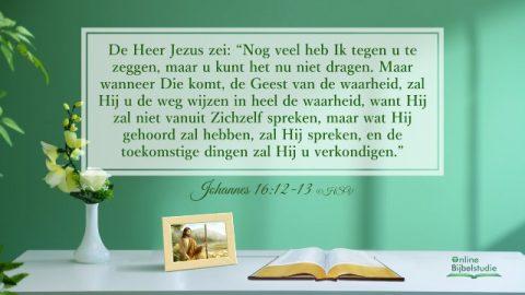 Bijbeltekst van de dag - Johannes 16:12-13 - God zal ons in alle waarheid leiden