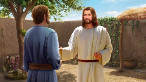 Zeventig maal zeven keer vergeven   De liefde van de Heer