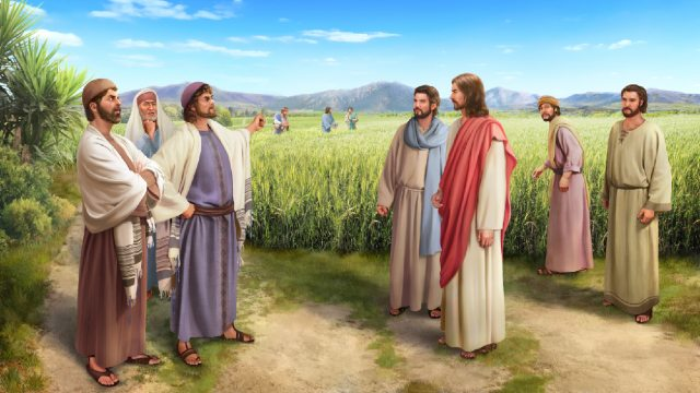Waarom werden de farizeeën vervloekt door de Heer Jezus