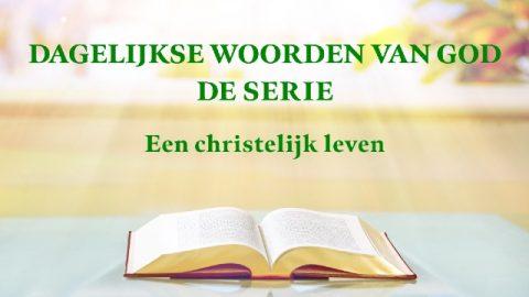 Dagelijkse woorden van God 'Gods werk, Gods gezindheid en God Zelf III'(Fragment VIII)