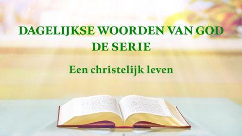 Dagelijkse woorden van God 'Gods werk, Gods gezindheid en God Zelf III'(Fragment XIII)