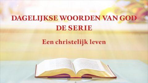 Dagelijkse woorden van God 'Gods werk, Gods gezindheid en God Zelf III' (Fragment XII)