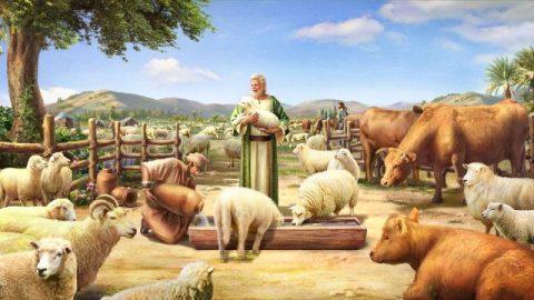 De feiten over het bestuur en de heerschappij van de Schepper over alle dingen en levende wezens zeggen alles over het ware bestaan van het gezag van de Schepper