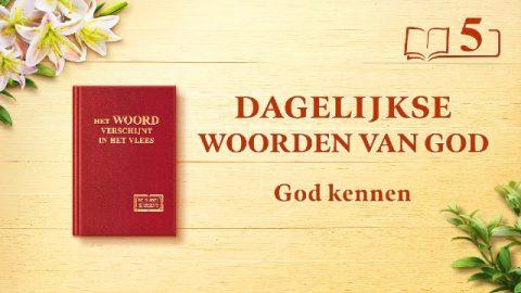 Dagelijkse woorden van God | God kennen is de weg naar het vrezen van God en het mijden van het kwaad | Fragment 5