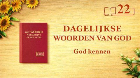 Dagelijkse woorden van God | Gods werk, Gods gezindheid en God Zelf I | Fragment 22