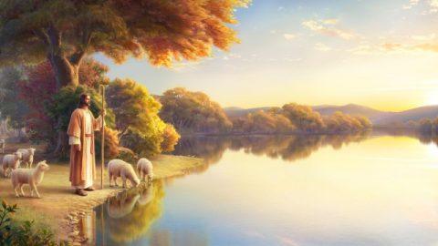 """Vraag: De Heer Jezus zei: """"Mijn schapen luisteren naar mijn stem"""" (Joh. 10:27). De Heer terugkeert om woorden uit te spreken om Zijn schapen te roepen. Bij het wachten op de komst van de Heer moeten we vooral Zijn stem proberen te horen. Maar nu is onze grootste moeilijkheid dat we niet weten hoe we naar de stem van de Heer moeten luisteren. We zijn ook niet in staat om onderscheid te maken tussen wat Gods stem is en wat de stem van de mens is. Alstublieft, communiceer met ons over hoe we voor eens en voor altijd zeker kunnen zijn van de stem van de Heer."""
